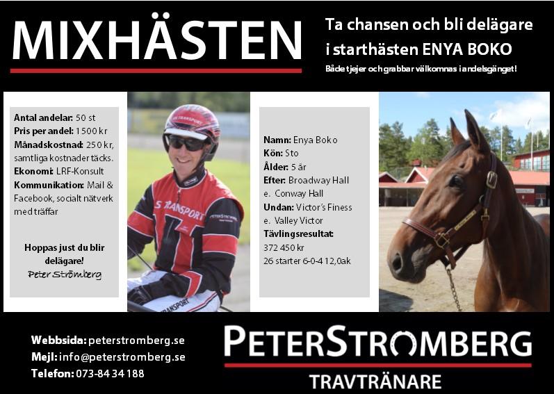 MIXHÄSTEN_HalvannonsPeterStromberg