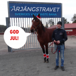 GOD JUL – tvåa på V75 i julklapp